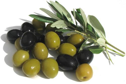"""Схемы вышивки. rfnhecz.  Схема вышивки  """"маслины """"."""